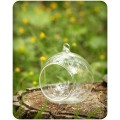 Основа шар стекло D10см