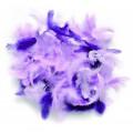 Набор перьев АСТРА 15см цвет: синий+сиреневый 20шт