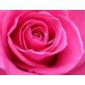 Пигментный косметический краситель (не мигрирующий) розовый 10мл