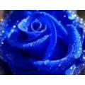 Пигментный косметический краситель (не мигрирующий) голубой 10мл