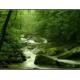 Косметическая отдушка Горный ручей 10мл