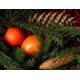 Косметическая отдушка Ёлка-мандарин 10мл